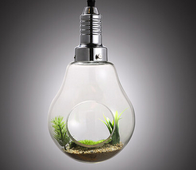 Glass pendant lamps garden bulb lights with plants green lights for home decoration kitchen room hanging lights glass bulb light