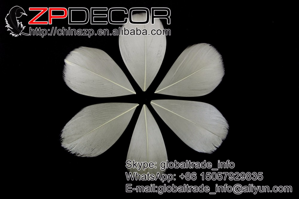 beige goose feather petal  (3)