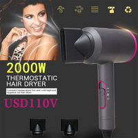 2019 Drop Shpping 2000W Dry Hair Blow Drier Durable Salon Hair Dryer for Electric Appliance