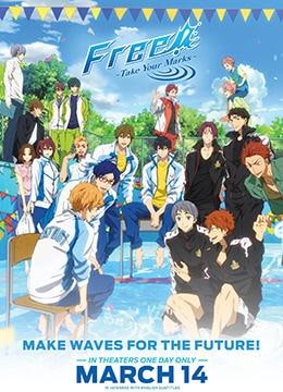 《Free! 男子游泳部 特别版》2017年日本剧情,动画,运动动漫在线观看