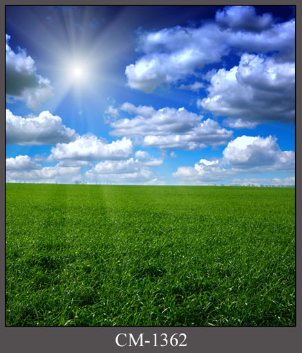 White cloud drifting background fabric grass photography backdrops for photo studio photographic background camera fotografia