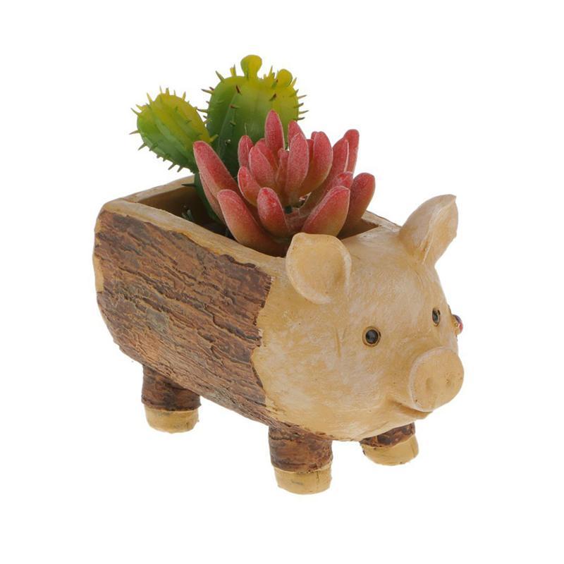 Us 955 46 Offbestoyard Biedronka Piggy Kikut Kwiat Sedum Soczyste Doniczka Bonsai Pole Roślin łóżko W Doniczki I Skrzynki Do Kwiatów Od Dom I