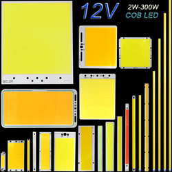 DC12V COB LED شرائط مصباح لوحة 5 W 10 W 20 W 50 W 200 W 300 W LED لمبة الأبيض أزرق أحمر الوجه مصباح cob على شكل شريحة مصباح DIY منزل سيارة الإضاءة 12 V