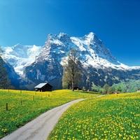 Niestandardowe 3D Fototapety Szwajcarski Alps Natura Dekoracje Nowoczesny Salon Sypialnia TV Tle Ściany Tapety Ścienne De Parede 3D