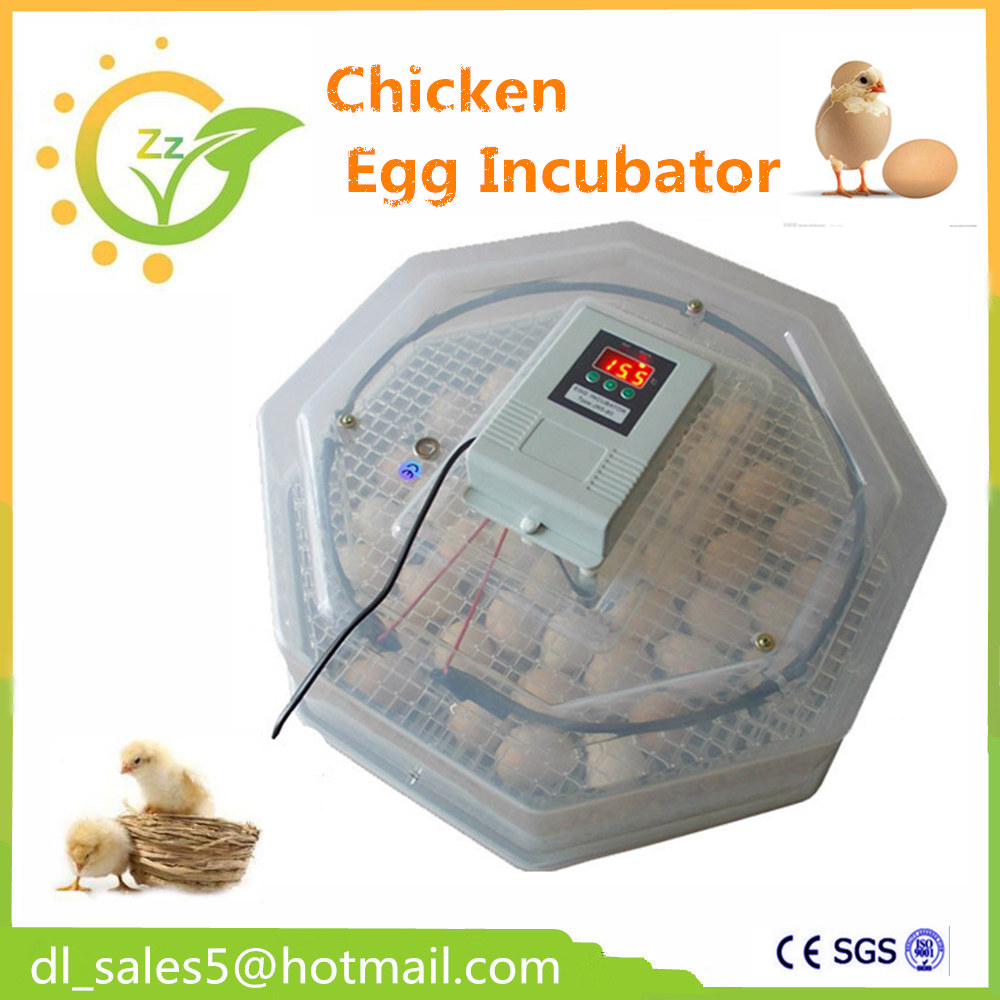 ФОТО  Cheap Mini Full Automatic 60 Egg Incubator Poultry Hatcher for Chicken duck parrot with Digital Control  CE Approved