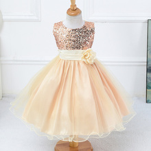 Baby Flower Girl Wedding Dress Ball Gown Prom Ball Gown Party Dress Clothing Girl Summer Dress Sweet Kid Girl Elegant Gift