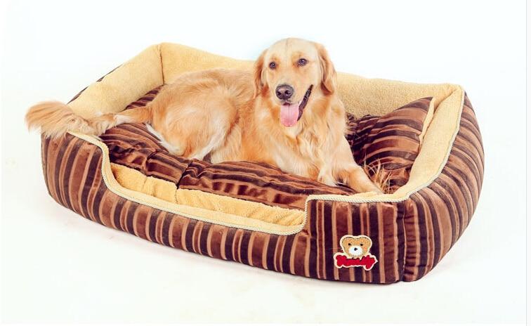 Productos alta calidad para perros invierno c lido for Ahuyentar perros del jardin