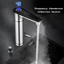 220 Induktion Thermostat Heizung