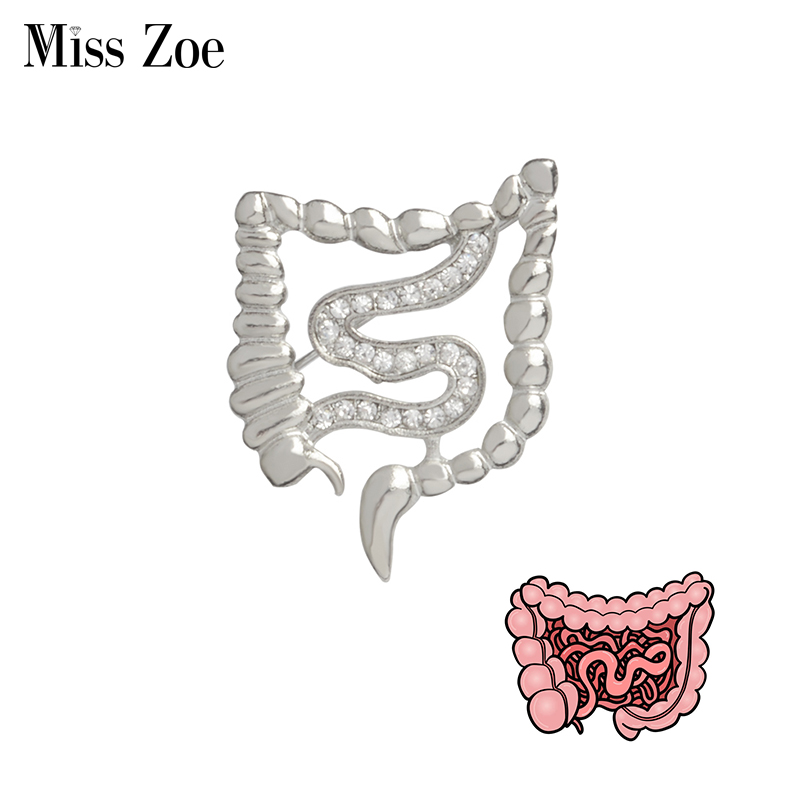 Bowels Shape Brooch Pins Gold Silver zircon Organ medical jewelry Gastroenterology Medicine brooch gift for Doctor Nurse
