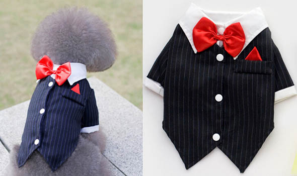 Fashion doggy cool bowknot suits puppy spring summer shirts clothes pet dog cat festival costume dogs cat hoodies clothing 10pcs