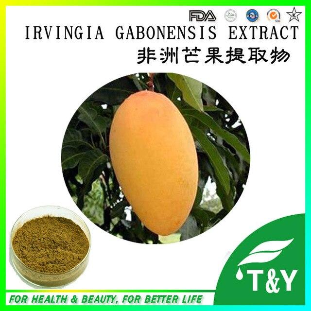Perda de peso ingrediente irvingia gabonensis extrato Extrato de Manga Africano 100g