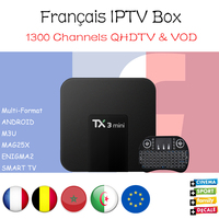 French IPTV TX3mini 2G16G Android 7 1 Smart TV BOX With 1300 Channels Europe Belgium Arabic