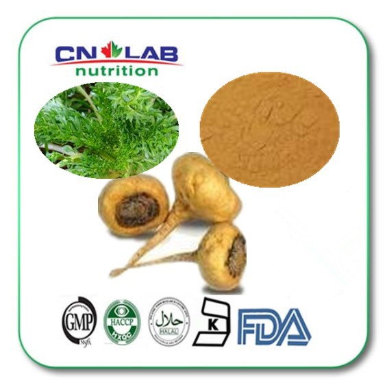 factory direct supplier maca factory supplier maca