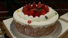 CAKE LACE MATS 2023