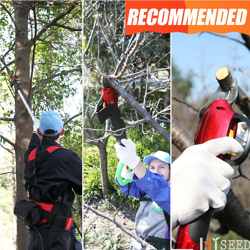 Tijeras de podar telescópicas eléctricas CE tijeras de árbol alto (hoja forjada)