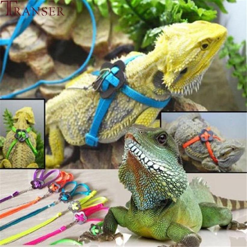 Adjustable Reptile Lizard Harness Leash Training Walk Leash Hauling Cable Rope