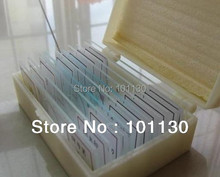 10 pieces Prepared Glass Microscope Slides for  science education  students learning teacher teaching