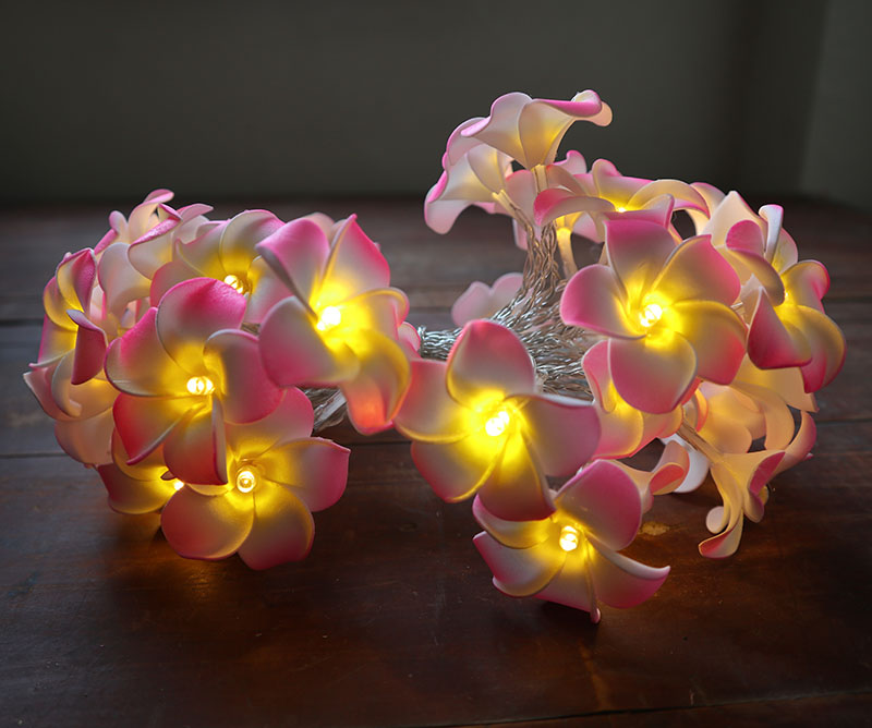 3M 20LED String Starry Lights USB Powered Hawaiian Foam Artificial Plumeria Flower Fairy For Wedding Garland Party Home Decor