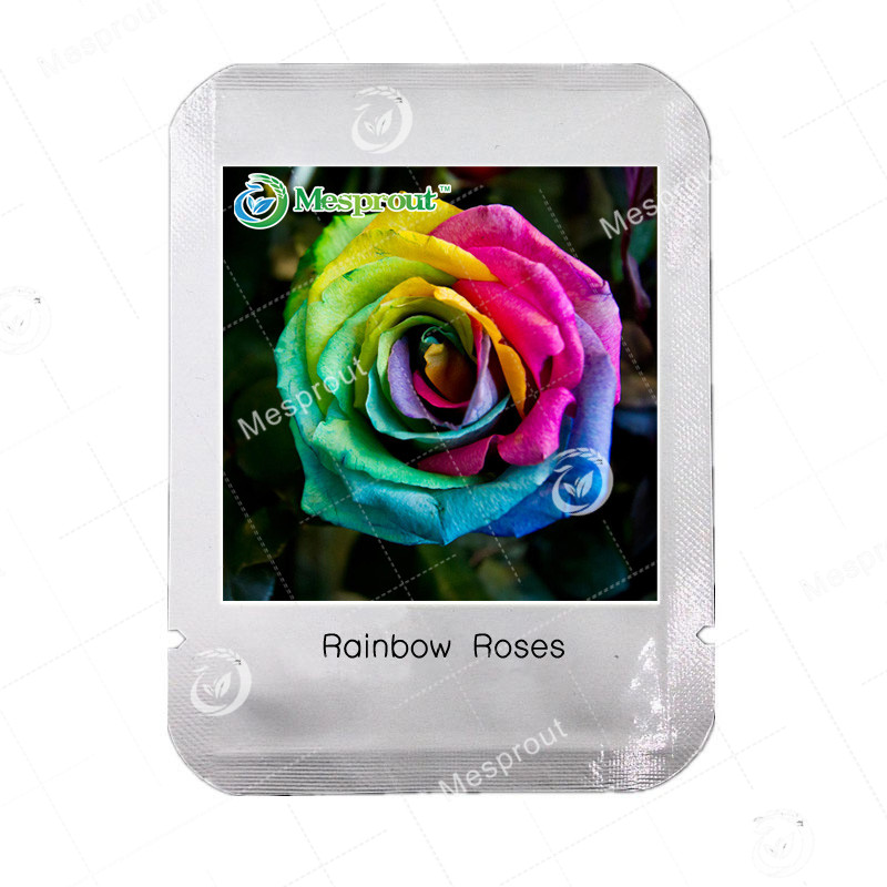 Compare prices on rainbow rose online shopping buy low for Buy rainbow rose seeds