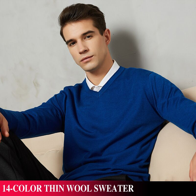 14-Color 2019 Autumn New Men Knitted Pullover Cashmere Sweater Casual Business V-Collar Thin Slim fit Sweaters Brand Clothes(China)