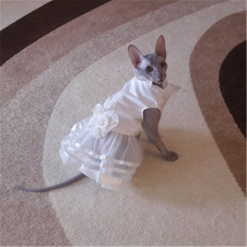 Summer Pet Dog Dress Wedding Dresses Cat Dress Skirt Puppy Clothing Spring Pet Clothes Chihuahua Yorkie Costume4