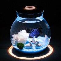 1pcs Mini Betta Fish Tank with Small Lights Desk Ornament Aquarium Plants Decoration Background Pet Accessories Supplies