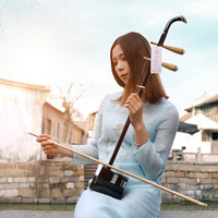 Hot selling Erhu Chinese two strings Violin Fiddle Exclusive Engraved Code With Accessories and Bow suitable For beginner