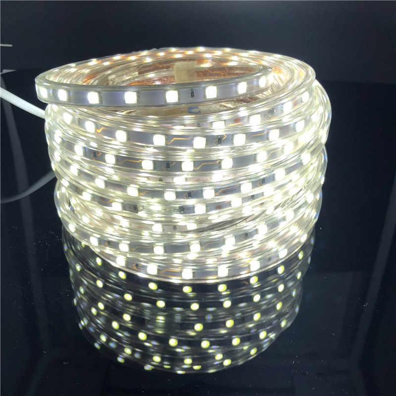 IP67 5050 Dẻo Dải Đèn LED Ánh Sáng AC220V 60 LED/M Chống Nước IP67 LED Băng Đèn Led Nguồn Châu Âu cắm 1 M/2 M/3 M/5 M/10 M/15 M/20 M