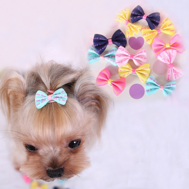 Popular Hair Bows Bow Adorable Dog - 30pcs-lot-Cute-Hair-Bows-For-Small-Dogs-Hand-made-Pet-Hair-Bow-Accessories-Hairpin-Dog  Best Photo Reference_378296  .jpg