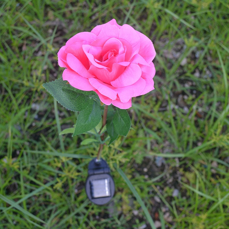 SOLLED Outdoor Solar Powered Pink Rose Flower Lights Solar Power Garden Decorative Stake ...