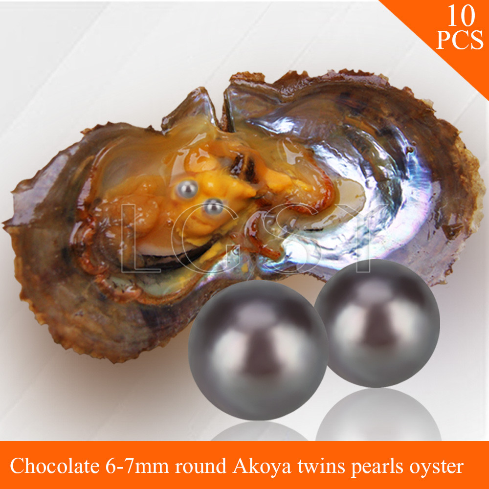 LGSY FREE SHIPPING Bead Chocolate 6-7mm round Akoya twin pearls in oysters with vacuum package for women jewelry making 10pcs cluci free shipping get 40 pearls from 20pcs 6 7mm aaa blue round akoya oysters twins pearls in one oysters