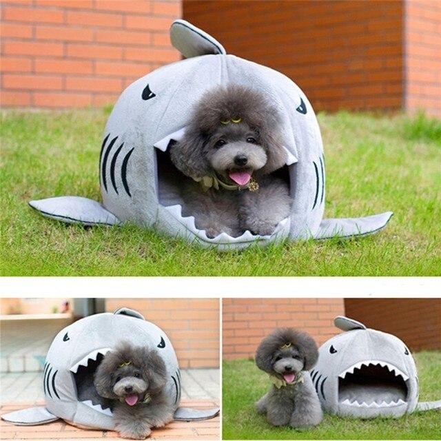 Shark Bed 4
