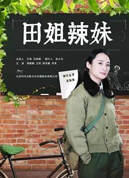 《田姐辣妹》2017年中国大陆剧情电视剧在线观看