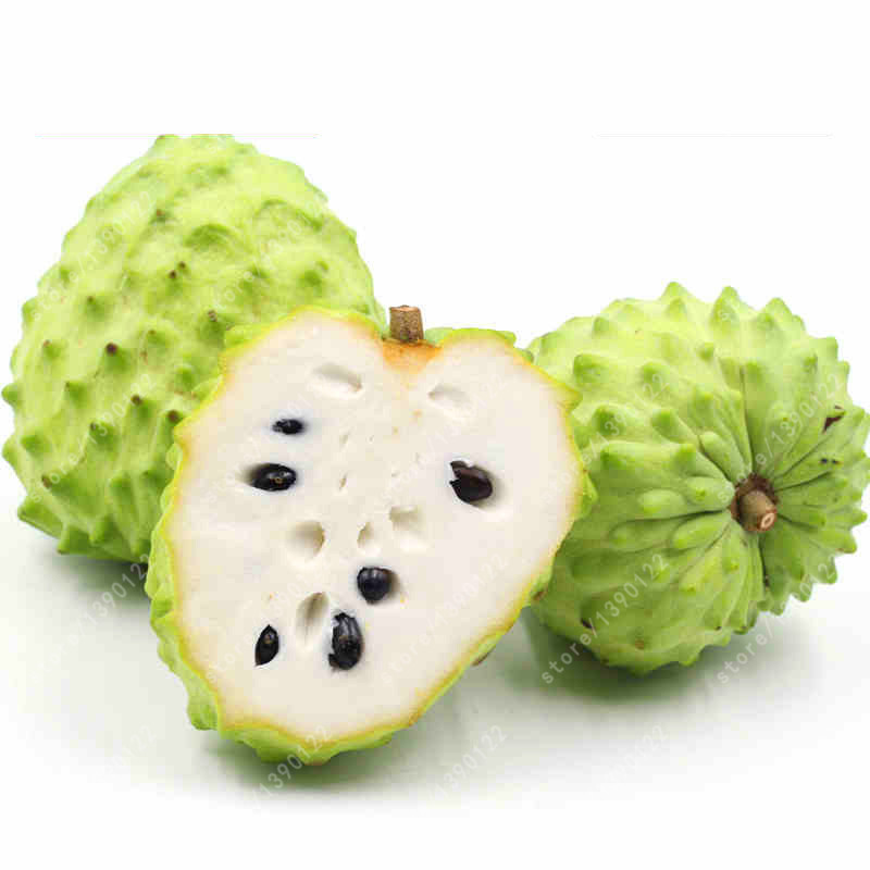 soursop fruit organic fruit