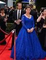 Royal Blue Long Sleeve Lace Celebrity Dresses 2016 new Elegant Sexy Wedding Formal Dresses Party Gowns Vestidos De Noche Largos