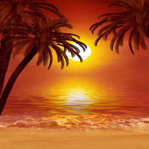 10x10ft Summer Hawaii Orange Sunset Sky Sea Palm Trees