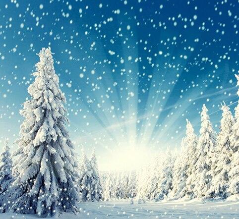 Снег Фон Зима Фотографии Фонов Рождественские Фоны Для Фотостудии Снег Горы Фонов Толстой Замши Ткань