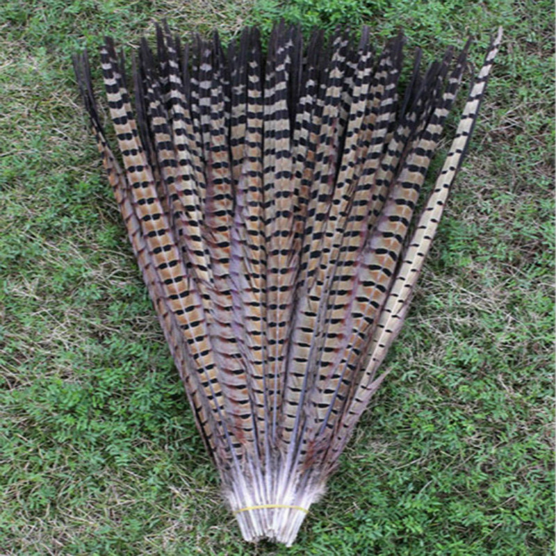 Wholesale 100 lot 20 22inches 50 55cm Natural color pheasant feathers DIY jewelry decoration