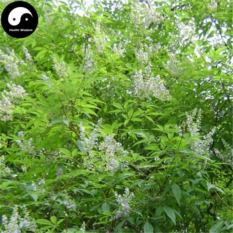 Купить Витекс Negundo дерево Semente 400 шт. завод кустарник ствола дерева Jing Tiao
