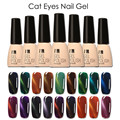 FOCALLURE I am Gel Polish UV Led Gel Lacquer Varnish 3D Cat Eye Gel Nail Polish UV Gel Polish Cat Eye Changing Nail Art