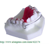 Free Shipping Orthodontics treatment model study dental tooth teeth dentist dentistry  odontologia Tyodont Model
