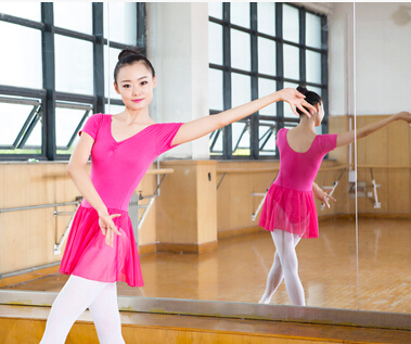 52bf3bf437 Free shipping Black Purple pink S XL Dancewear Ballet Leotard Exercise girl  dance clothes ballet dress suit adult-in Ballet from Novelty   Special Use  on ...
