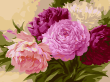 Frameless Canvas diy oil painting peony acrylic paint wall painting from the digital unique gifts Home decoration