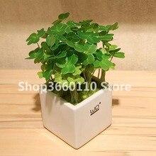 New Arrival 100 Pcs / Bag Bonsai Four Leaf Clover Trifolium Repens Mixed Dutch Diy Home & Garden Potted Planting
