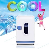 CBJ Auto Car Refrigerator Mini 12L Fridge Dual Use Home Car 220V 12V Electric Cooler Box