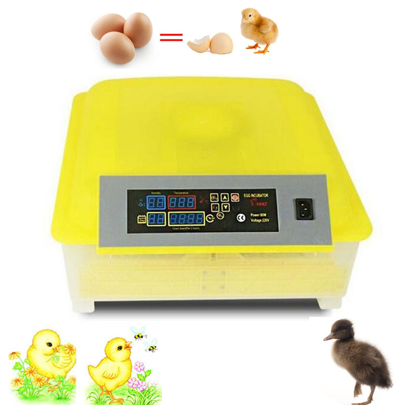 48 eggs mini poultry incubator electronic display thermostat  home automatic chicken egg incubator small incubator machine 1 piece lowest price full automatic digital display poultry egg incubator mini 48 chicken eggs hatching machine