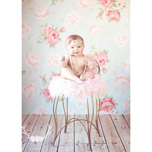 2016 Free shipping  5x7ft vinyl backdrop backgrounds for photo studio children shooting Computer Painted Backdrops P0634