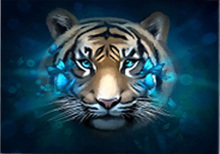 DIY Tiger diamond painting tiger head animals dimaond embroidery full heads mosaic round drill