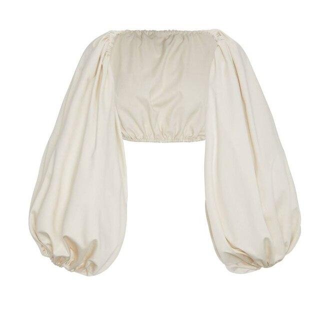 TWOTWINSTYLE Backless Short Shirt Female Slash Neck Lantern Sleeve Large Size Crop Top Blouse 2018 Summer Fashion Sexy Clothing 5