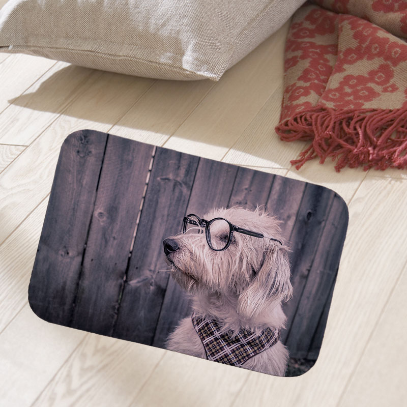 New Home Decorative Front Door Mat Cute pets dog Printed Flannel Anti-Slip Floor Mat Carpet Entrance Doormat Rug 40x60cm doormat